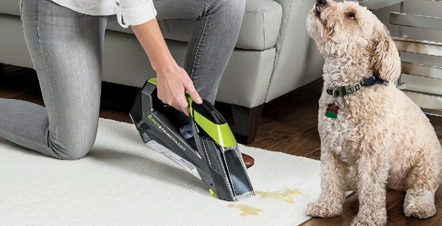 cordless steam cleaner
