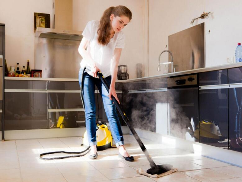 cordless steam cleaner price